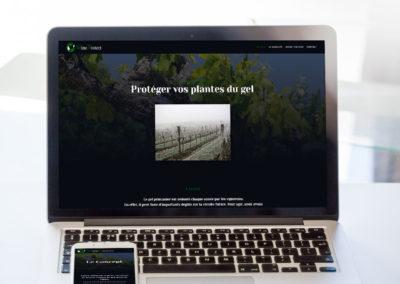 WEB – WineProtect